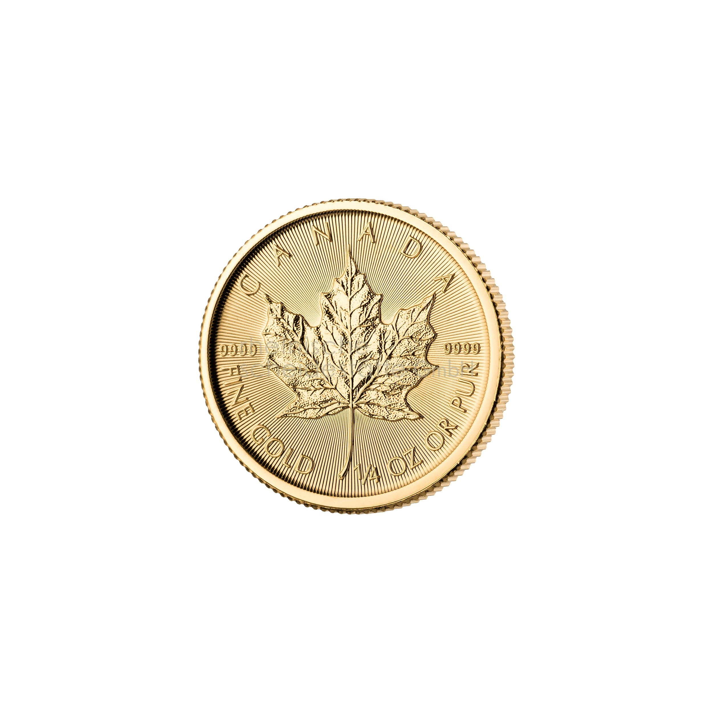1/4 Unze Maple Leaf Goldmünze 1