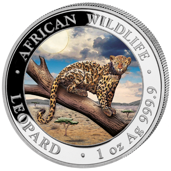 1 Unze (oz) Somalia Leopard 2021 Silbermünze Farbapplikation (coloriert)