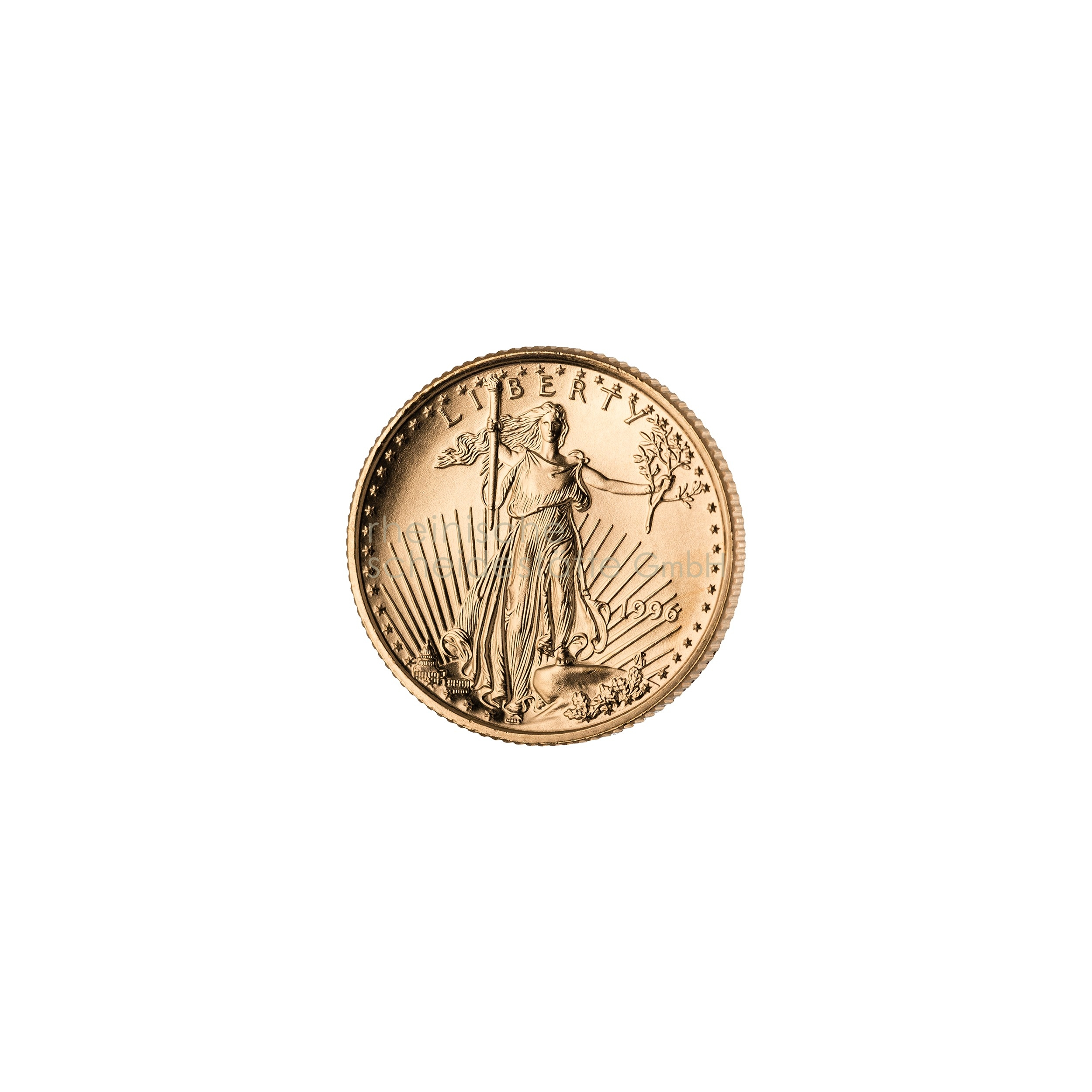 1/10 Unze American Eagle Goldmünze 2