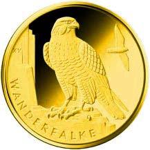 """20-Euro-Goldmünze 2019 """"Wanderfalke"""""""