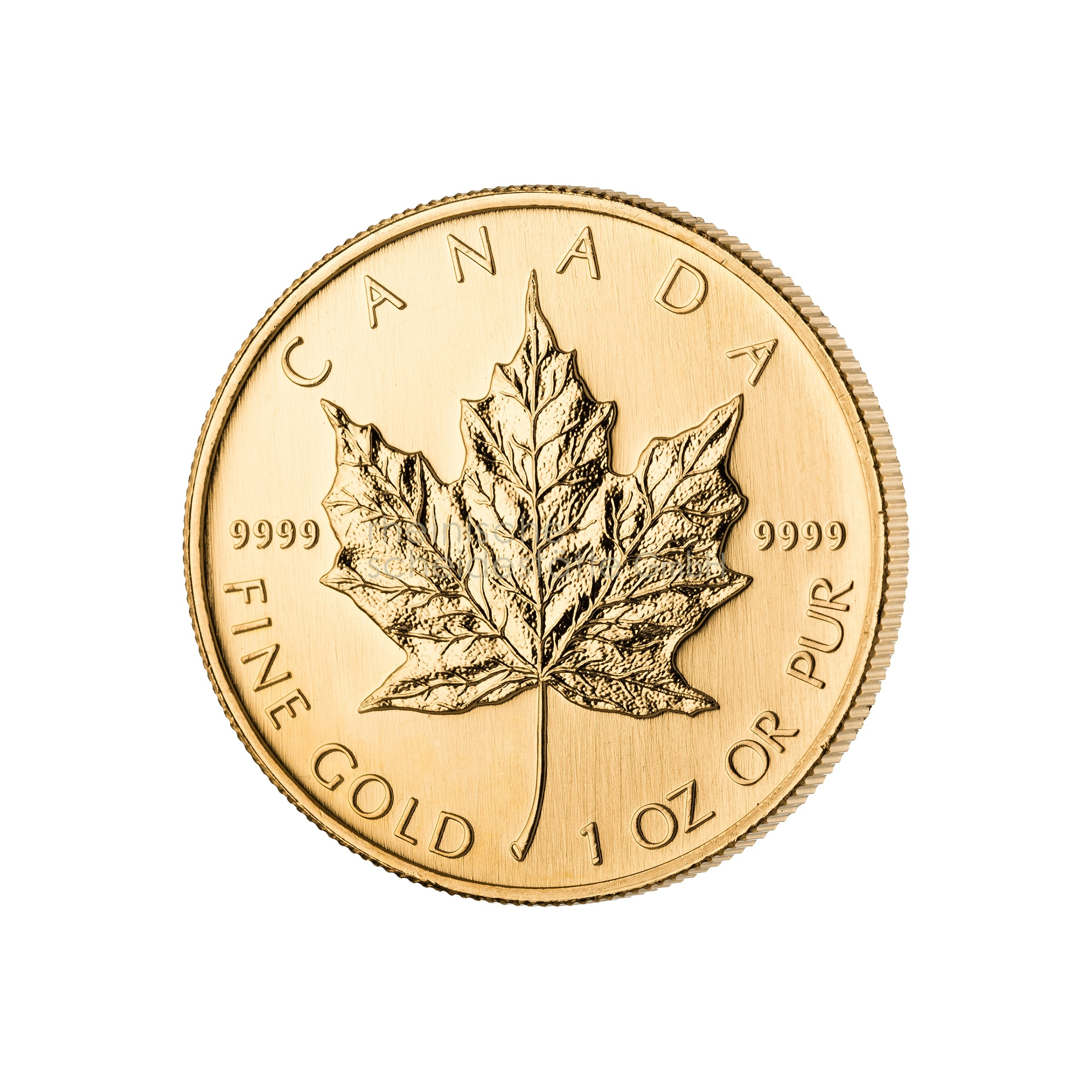 1 Unze Maple Leaf Goldmünze 1