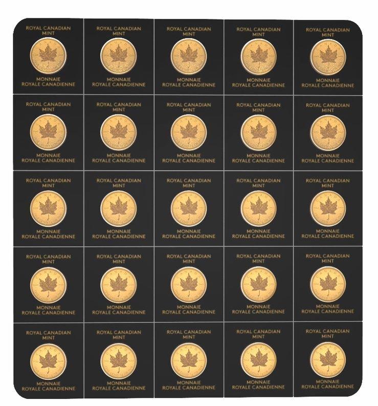 Maplegram 25 x 1 g Goldmünze